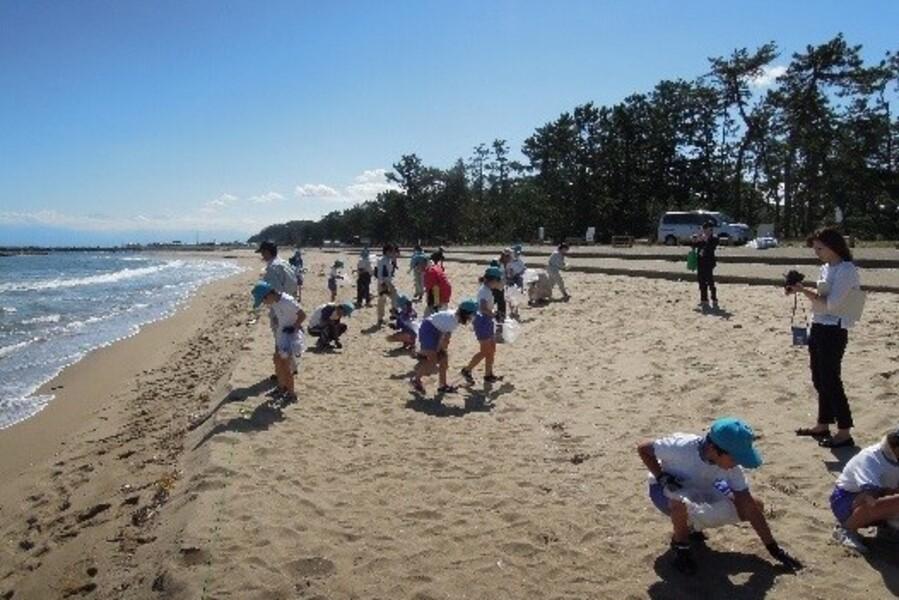 海辺の漂着物調査