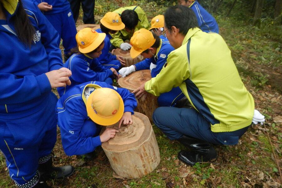 3.自社社有林「中パの森」での自然体験学習会開催:自然とのかかわりの中で森のはたらきについて理解を深めてもらっています。